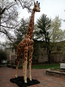 Party Animal @ IUBloomington